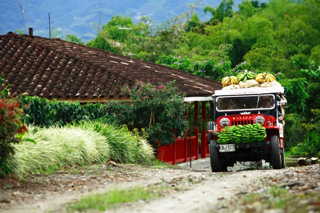 transporte_terrestre_turistico_eje_cafetero_colombia_gente.640x