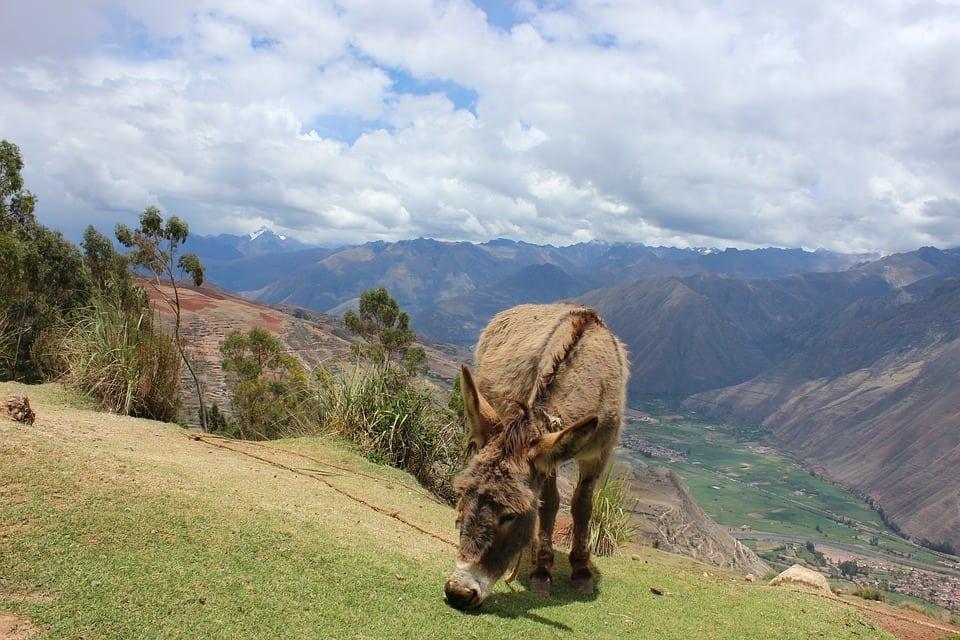 Valle Sagrado de los incas. Cusco en 3 Días