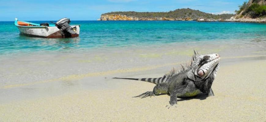 Las mejores playas de Venezuela